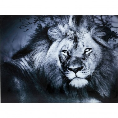 Picture Glass Lion King Lying 120x160cm Kare Design