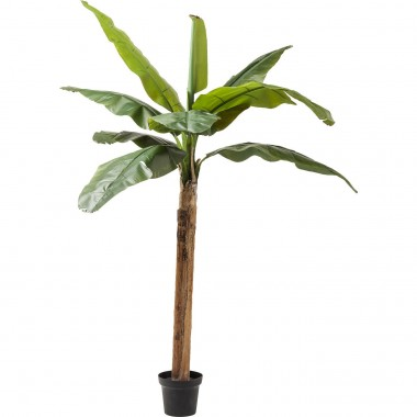 Deco Plant  Banana Tree 190cm Kare Design