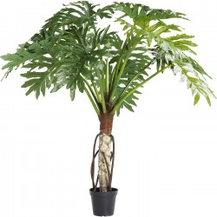 Decoratie  Plant Big Monstera 175cm Kare Design