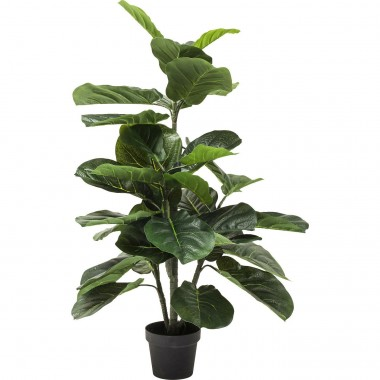 Deco Plant  Fiddle Leaf 120cm Kare Design