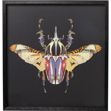 Picture Frame Art Beetle 60x60cm Kare Design