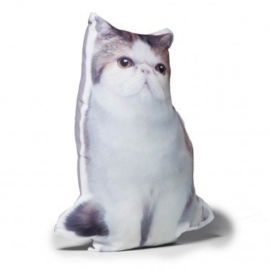 Coussin Pussy Cat ass.