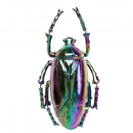 Décoration murale Plant Beetle rainbow