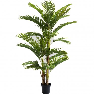 Plante décorative Palm Tree 190cm