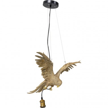 Suspension Parrot